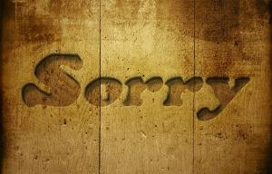 sorry-229978_1280