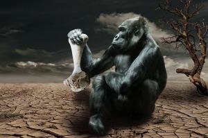 gorilla-834251_1280