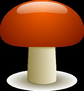 A Saffron Mushroom is Poisonous